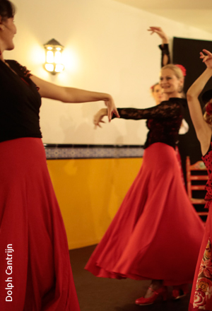 workshops FlamencoVivo